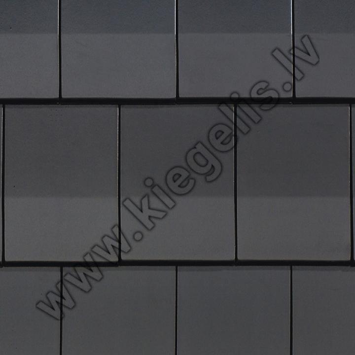 Māla dakstiņš Datura
